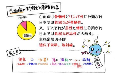 Images of FAB分類 - JapaneseClass